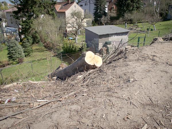 Nasyp przy Trójmiejskim Parku Krajobrazowym (fot. własna)