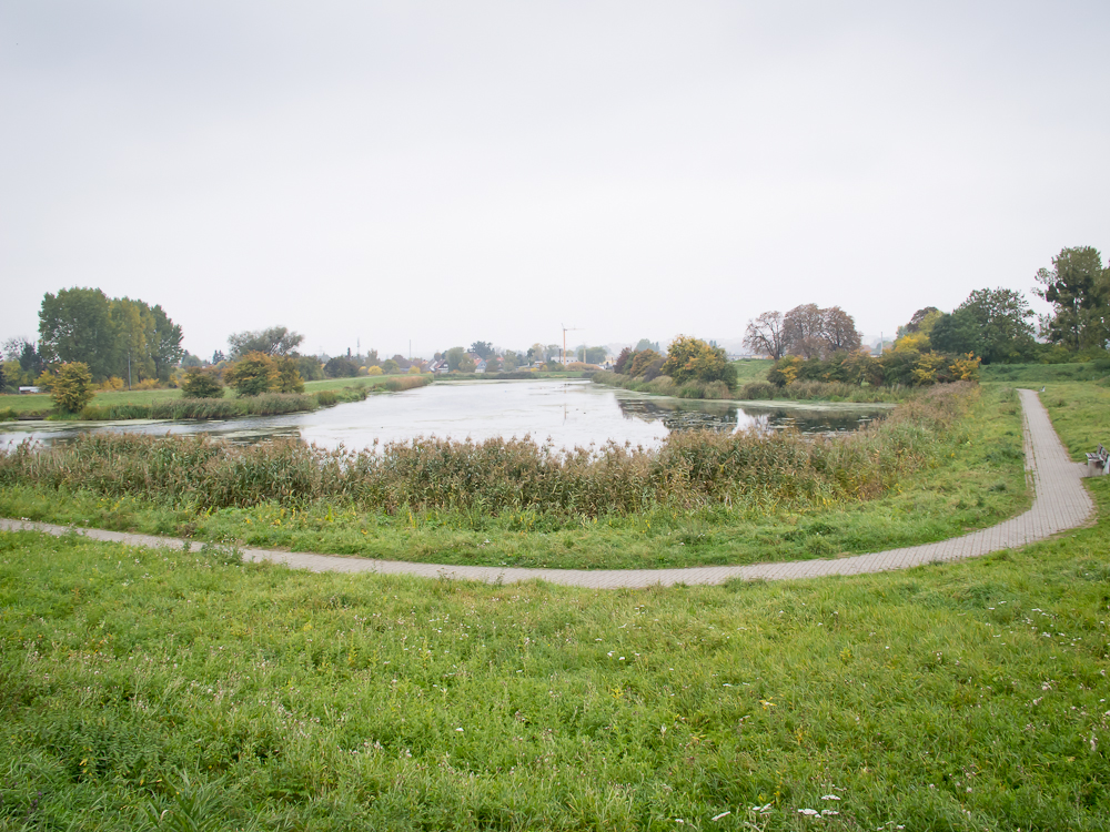 Wzdłuż Opływu Motławy (fot. własna)