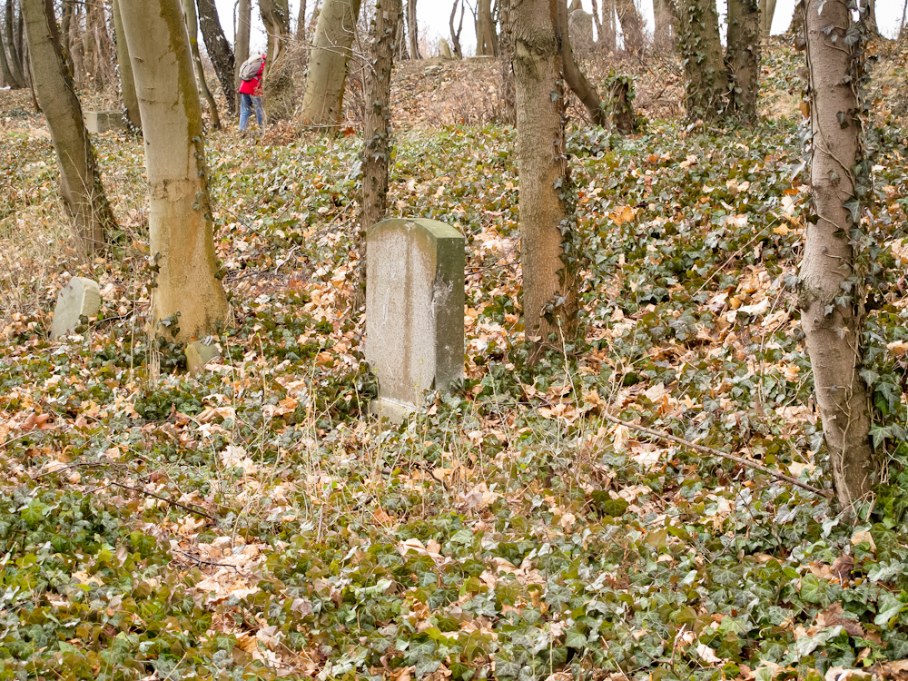 Części nagrobków cmentarza krematoryjnego (fot. własna)