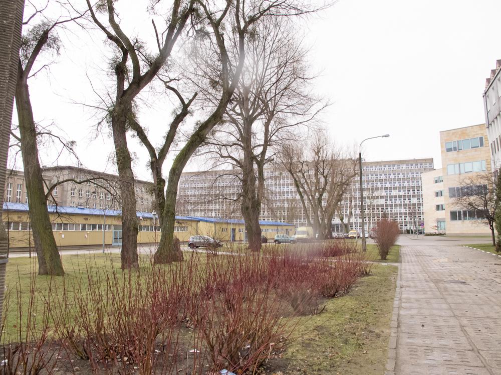 Budynki Politechniki Gdańskiej (fot. własna)