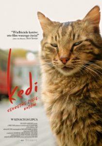Kedi (plakat)